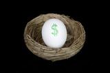 retirement nest egg dollars poster