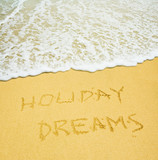 holiday dreams poster