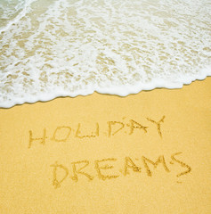 holiday dreams