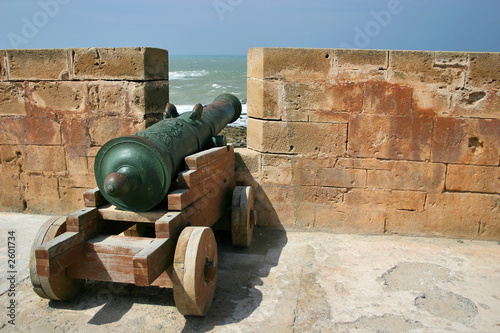 cannon in the fortress in essaouira
