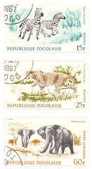 cheetah, zebras, elephants post stamps