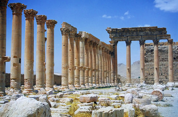 ruins of ancient city palmyra