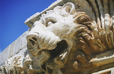 baalbek  (detail) -  lion head