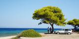 trees. sea. car. family. sky. tree. ocean. greece. poster