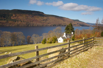 the banks of loch tay