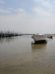 bateau de plaisance et parc à huître