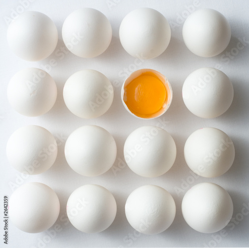 odd egg out - 2642359