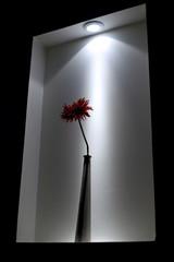 fleur et vase design ambiance tamisée
