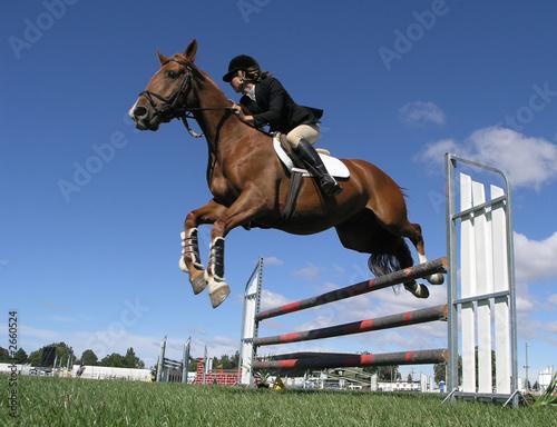 Staande foto Paardrijden airborne