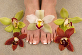 orchids and feet poster
