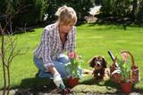 Fototapety pretty gardener