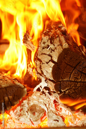 blazing fire wood in red and orange flames with as