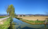 countryside in spring, panoramic view poster