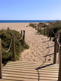 wooden walkway to the beach poster