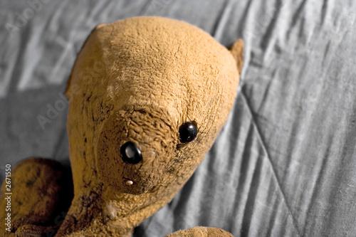 okaleczone-niedzwiadek-maltretowane-dziecinstwo