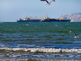 gulls, stormy sea and ships 1 poster
