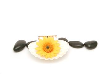 spa stones and daisy
