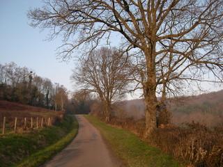 chemin dans la campagne