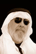 a portrait of the sheik at the beach