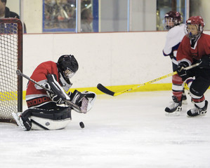 goalie blocked hockey shot