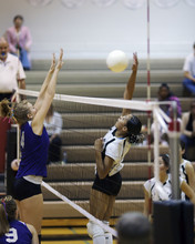 pic de volley-ball