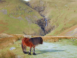 howgill pony and cautley spout poster