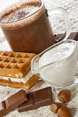 cup of hot chocolate and wafer