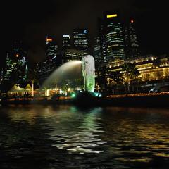 merlion singapore by night