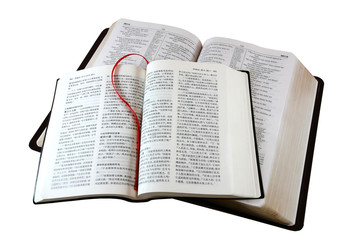 bible in different languages, isolated on white