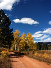 Autumn Country Dirt Road in Colorado