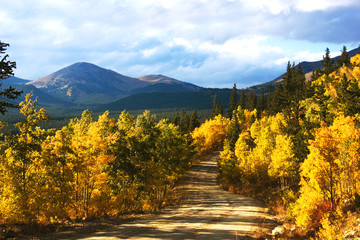 boreas pass with aspenglow (colorado)