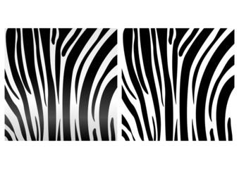 animal_skin_zebra