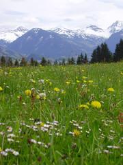 kitzbuhel in primavera