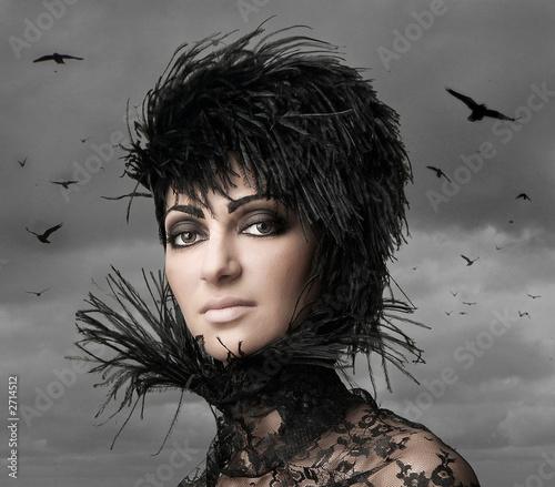 schwarze möwe