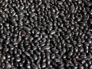 black beans - background