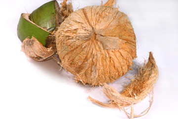 coconut with outer shell