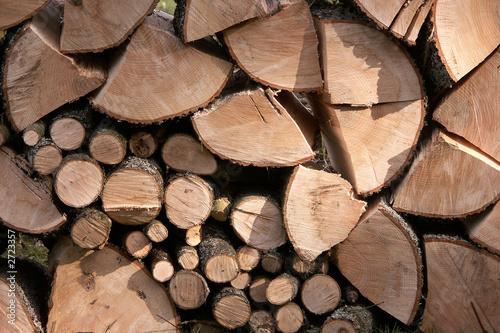 St re de bois de pascal cribier photo libre de droits 2723357 sur - Une stere de bois ...