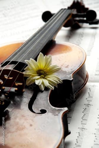 Staande foto Muziekwinkel violin with flower on music paper