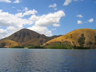 the yellow dry hills, komodo archipelago, indonesia