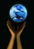 save the earth - marine life poster