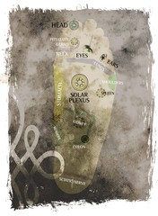 chakra foot - reflexology points