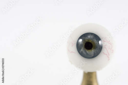 single eye on white background