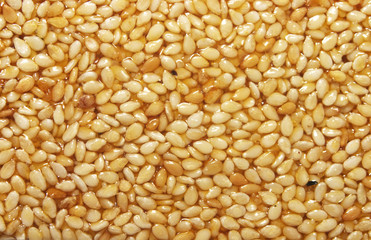 sesame seeds in sesame oil