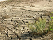 drought land(river)