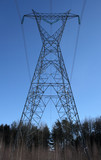 huge electricity pylon in the forest poster