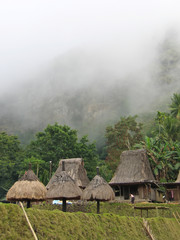 fog on a ngada village from the ngadhus and bhagas, bajawa, flor