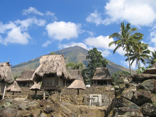 ngada village from the ngadhus and bhagas, bajawa, flores, indon