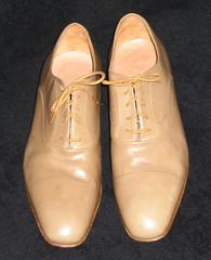 executive shoes, male, tan on black backgroun