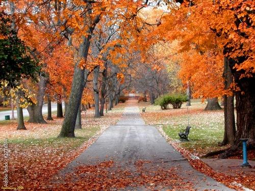 Leinwanddruck Bild tower grove autumn
