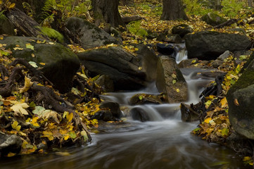 streams in the autumn